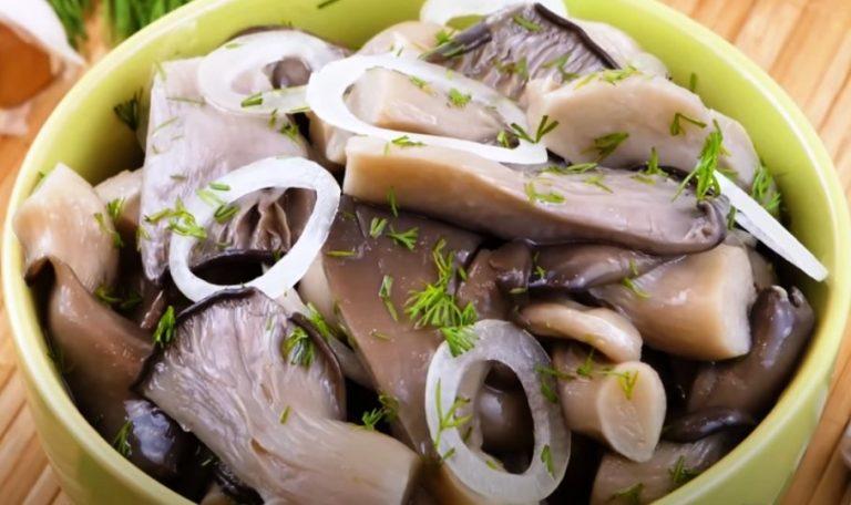 Вкуснее шампиньонов и без уксуса! Готовлю соленые грибы Вешенки за сутки: рецепт быстрой засолки грибов горячим способом
